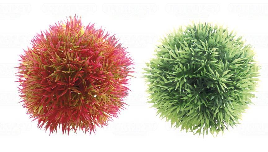 Akvarijní rostliny mix 10cm
